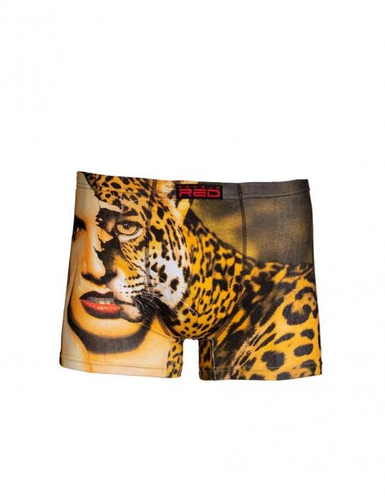 2FUN Boxers Face Off Leopard